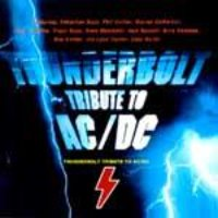 V.A. (Tribute) / Thunderbolt Tribute To AC/DC (미개봉)
