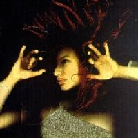 Tori Amos / From The Choirgirl Hotel (수입)