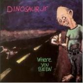Dinosaur Jr. / Where You Been (수입)