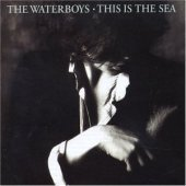 Waterboys / This Is The Sea (수입)